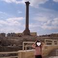 Photos: アレキサンドリア ポンペイの柱