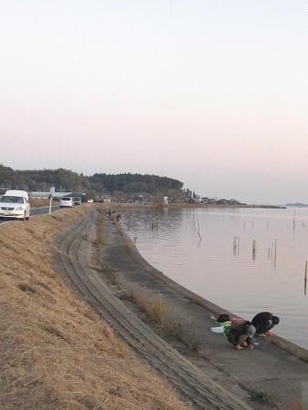霞ヶ浦 高崎付近 釣り風景