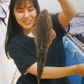 Photos: ダイワ釣魚図鑑-改訂版 (8)