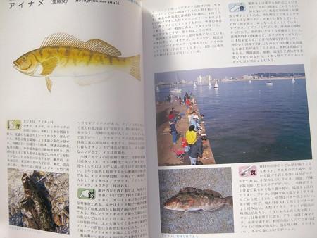 ダイワ釣魚図鑑-改訂版 アイナメ