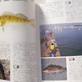 Photos: ダイワ釣魚図鑑-改訂版 アイナメ