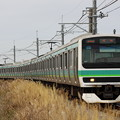 成田線 普通列車 E231系