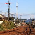 Photos: 信号機