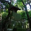 写真: 森の中の祠