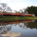 写真: 小湊鐵道・2014春