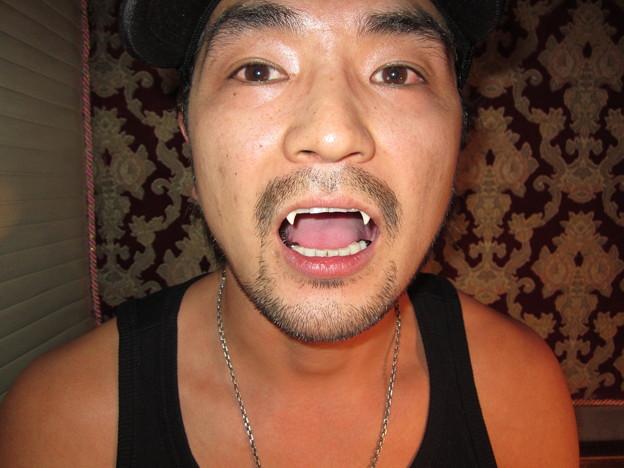 FANG SHOP 付け牙 N-138