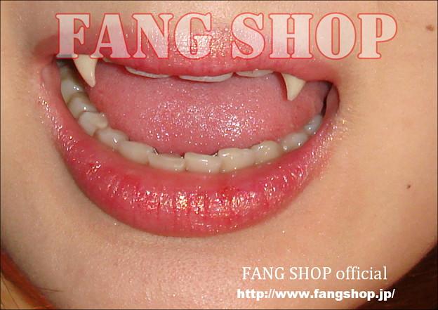 FANG SHOP 付け牙 N-0066