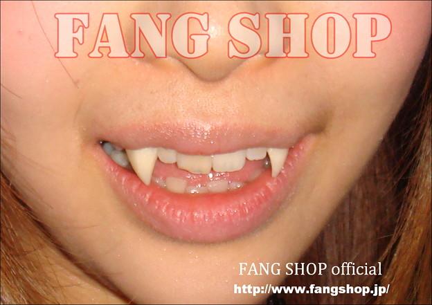 FANG SHOP 付け牙 N-0068