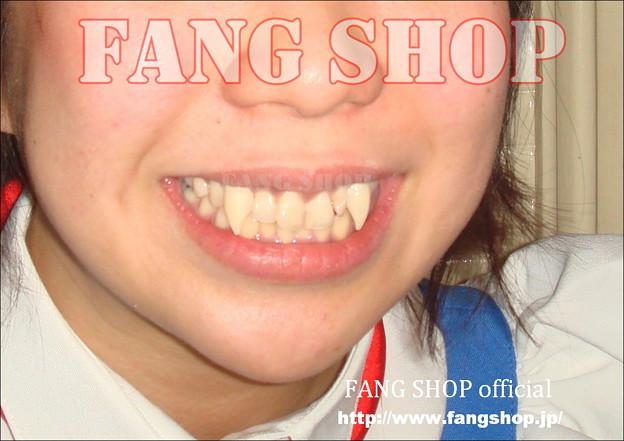FANG SHOP 付け牙 N-0078