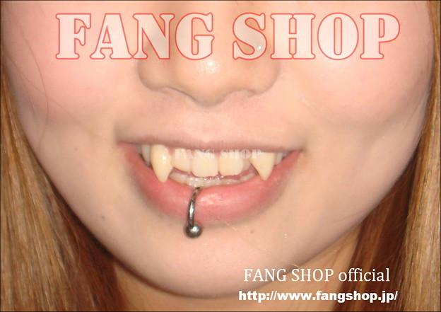 FANG SHOP 付け牙 N-0083