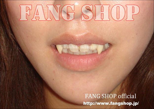 FANG SHOP 付け牙 N-0098