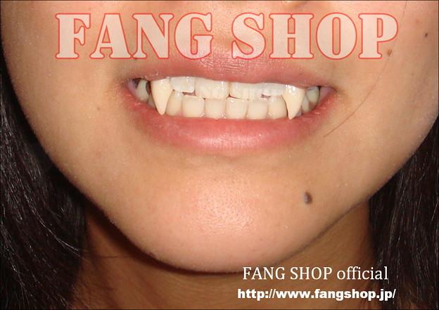 FANG SHOP 付け牙 N-0099