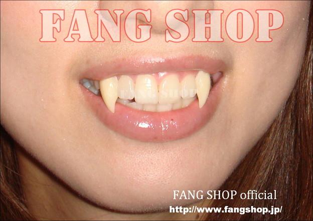 FANG SHOP 付け牙 N-0048
