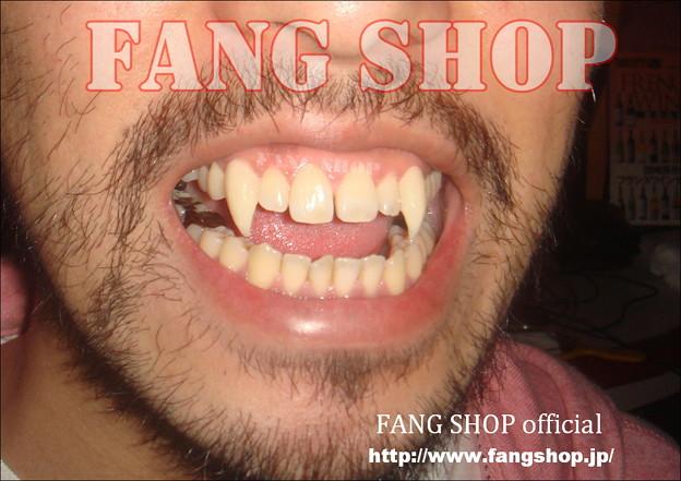 FANG SHOP 付け牙 N-0092