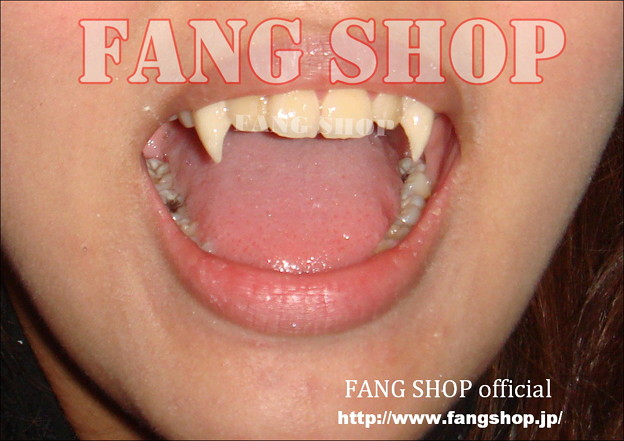 FANG SHOP 付け牙 N-0049
