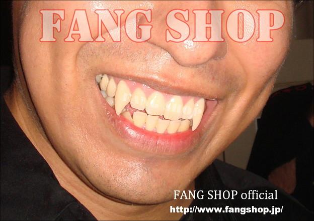 FANG SHOP 付け牙 N-0059