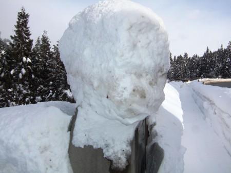 2006_0105雪間の里・大久保雪景0002