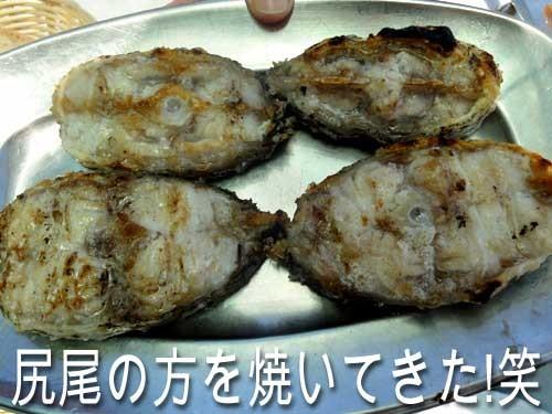 3569_fish
