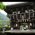 Photos: 善峰寺の紫陽花#3