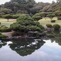 Photos: 綺麗な庭園なんだが