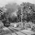 Photos: 昭和42~44年頃の八高線の踏切をD51が通過する