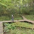 イノシシの散歩:-O