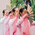 Photos: 雅(Miyabi)
