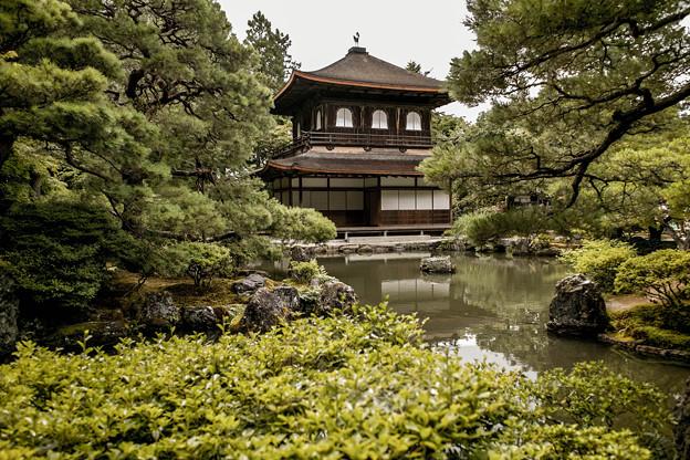 Photos: 曇天の銀閣寺