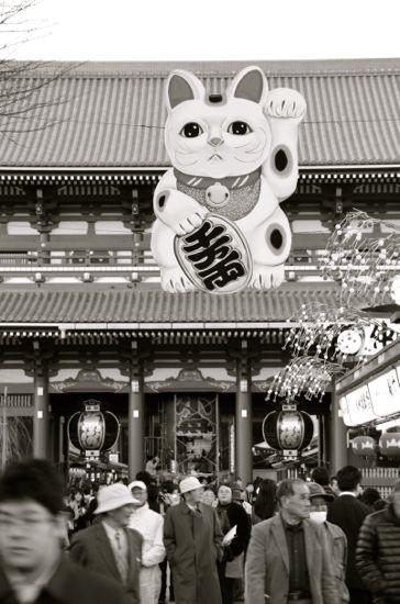 左手挙げの招き猫3@浅草寺