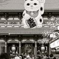 Photos: 左手挙げの招き猫3@浅草寺