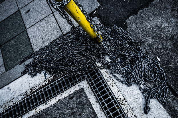 Photos: Metallicな蛇(爆)