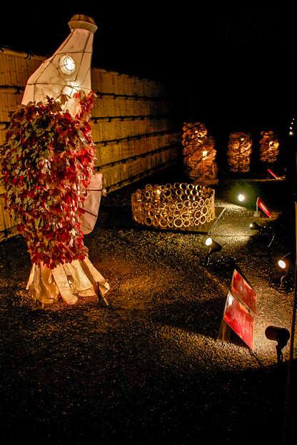 Photos: 二条城の夜桜の会場にて