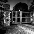 写真: Gate