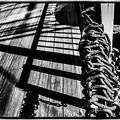 Photos: Chain