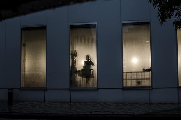 Photos: 深窓の令嬢