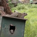 写真: 二人の住民