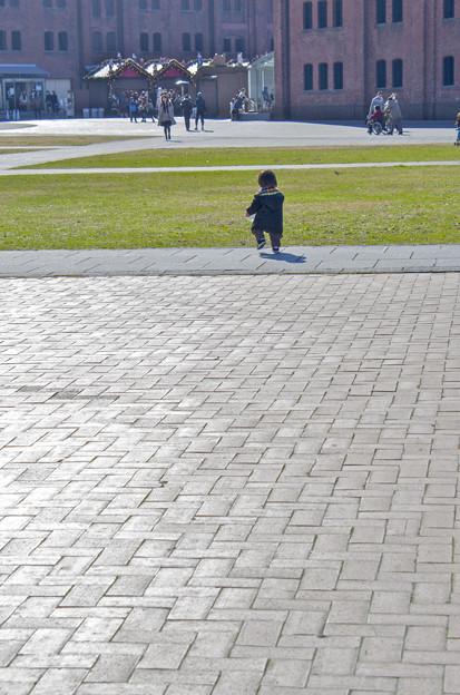写真: よちよち歩き