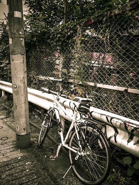 Photos: 電柱が警官で自転車が説教されているかのようだ(爆)
