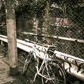 電柱が警官で自転車が説教されているかのようだ(爆)