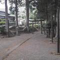 参道は特徴的に細い@神奈川県の最北部、相模原市緑区の牧野(まぎの)の山間にある大石神社