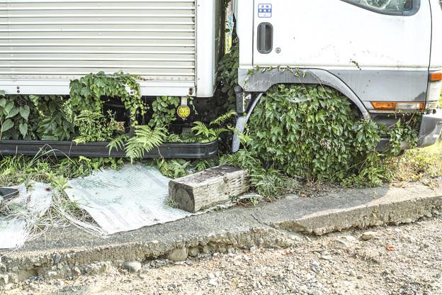 Photos: ドレスアップタイヤの見本(爆)