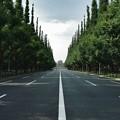 東京神宮外苑の絵画館の遠近感