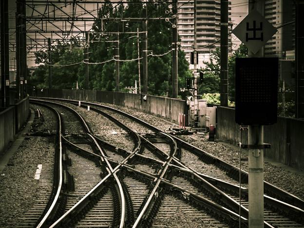 交錯する鉄の道