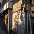 """Photos: """"キャンバス""""に映る影"""