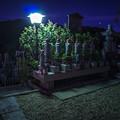 Photos: 夜の六地蔵