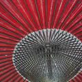 Japanese retro umbrella@秩父霊場巡礼の旅2013
