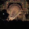 光のトンネル@神戸ルミナリエ2010