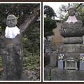 Photos: 大慈寺お地蔵様@秩父霊場巡礼の旅2013