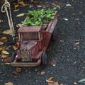 木製のトラックは妙に植物が似合う@第四回東京蚤の市;2013秋