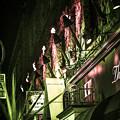 写真: 横浜、夜、炎